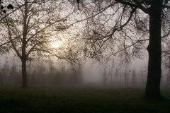 Brumes matinales - © Christophe Sertelet