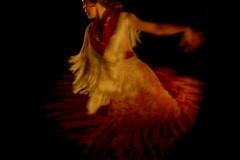 Flamenco - © Yves Chabrillat
